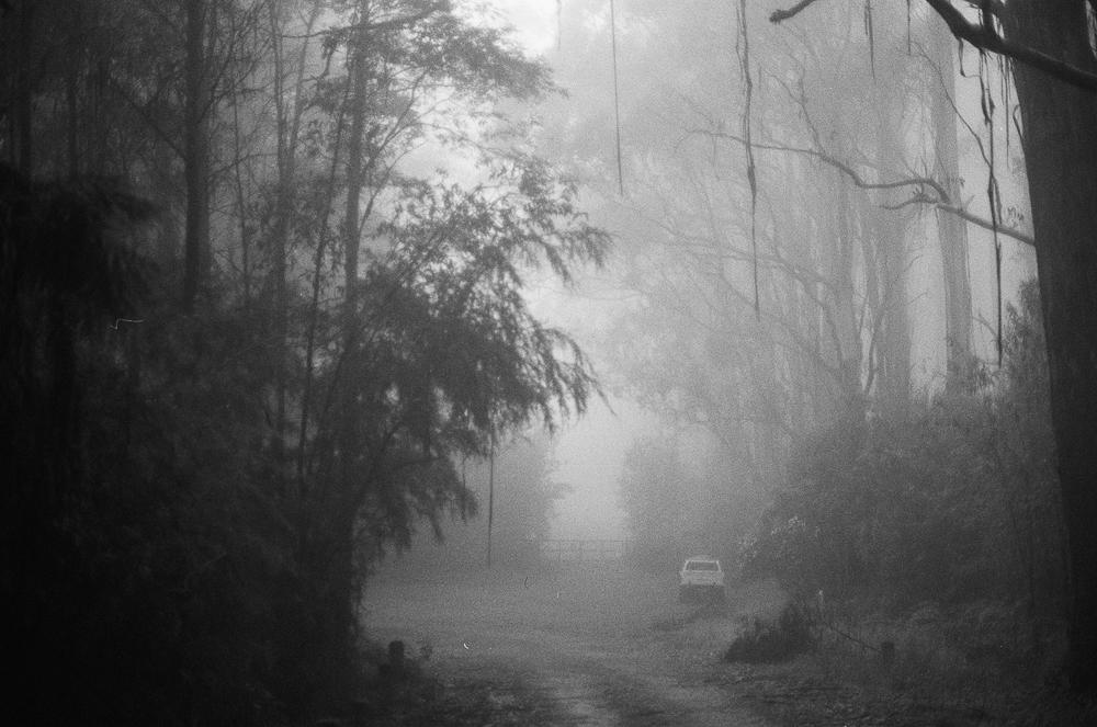 Black Spur Drive